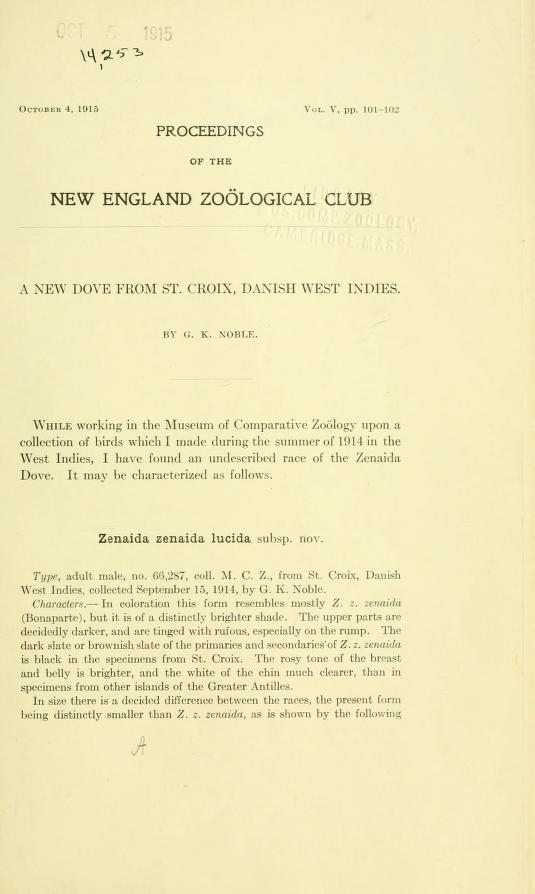 A New Dove from St. Croix, Danish West Indies