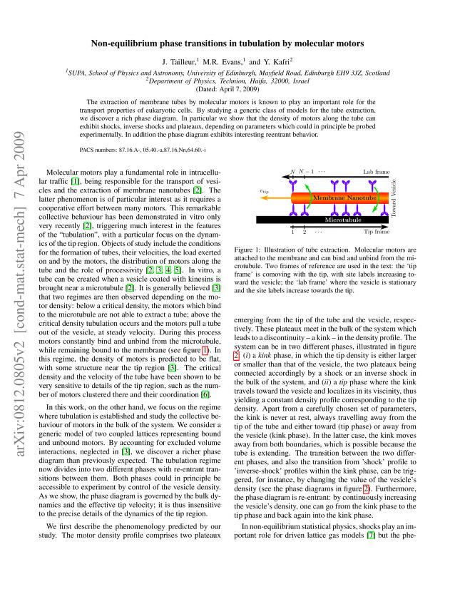 J. Tailleur - Non-equilibrium phase transitions in tubulation by molecular motors